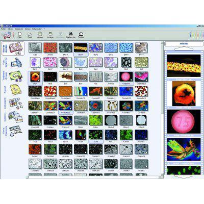 Archimed, Camera Control, Image Capture, Storage, Annotation, Enhancement - Modular and Expandable