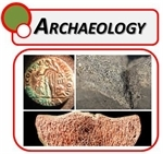 Archaeology Microscopes