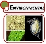 Environmental Microscopes