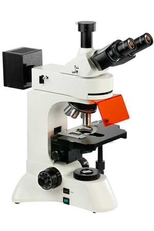 GXM-L3201 LED, Research, Fluorescence, Trinocular Microscope