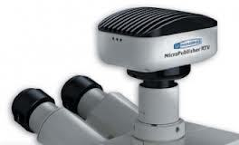 Advanced Cooled Microscope Camera Range from QImaging incl. MicroPublisher, QICAM, Retiga + Rolera