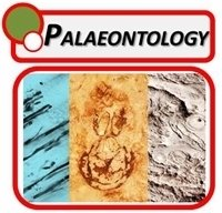 Paleontology Microscopes