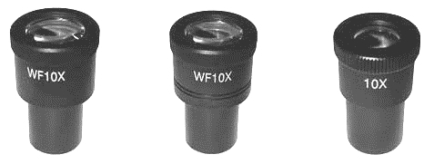 FN20 SMART/POLTEC4&5 -10X Eyepiece with Scale