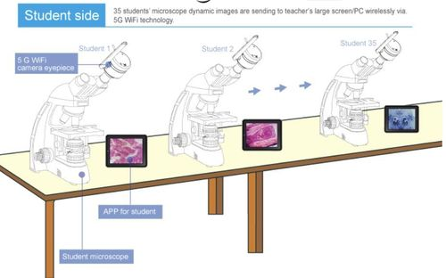 5G Interactive Microscopy WIRELESS Teaching System