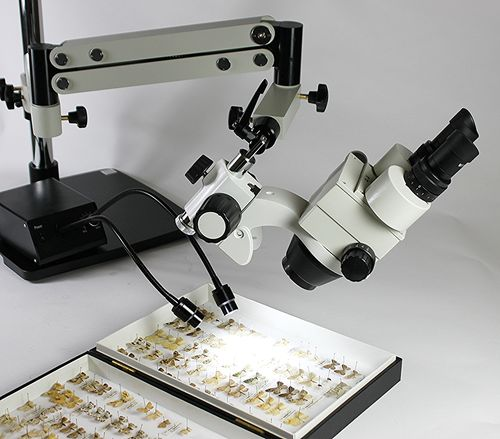 XTL+AXIAL ZOOM Stereo Zoom Microscope Head for Through Axis Observation - Trinocular, SICZ