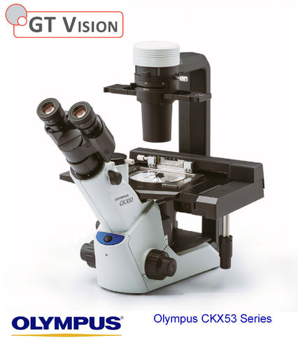 Olympus CKX53 Series Inverted Microscope
