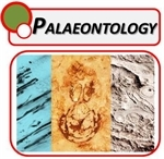 Palaeontology Microscopes
