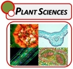 Plant Sciences Microscopes