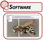 Microscope Software