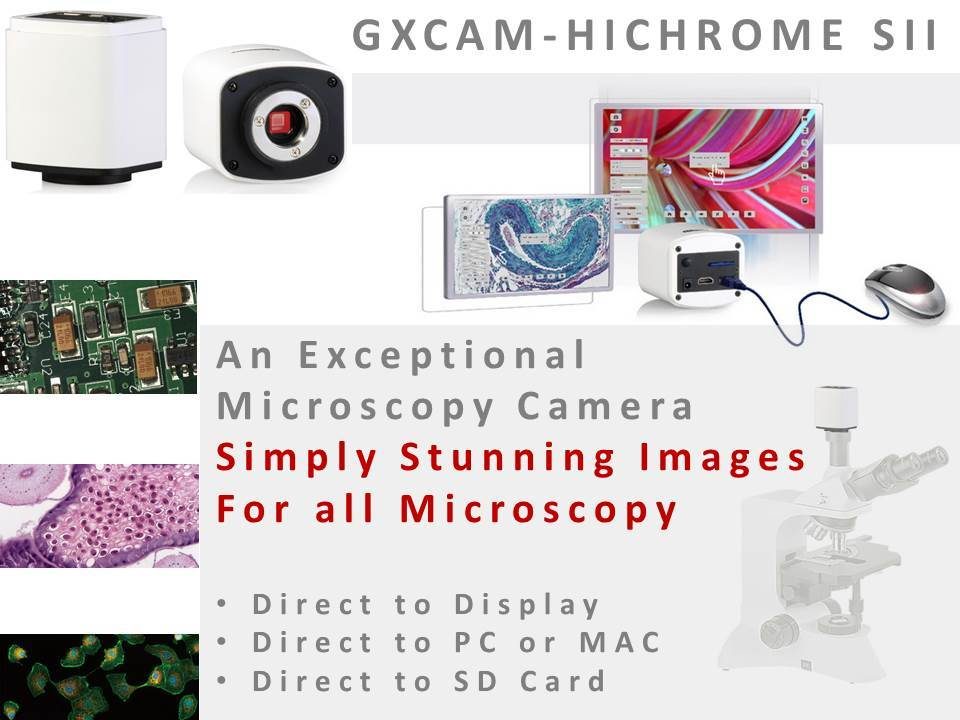 GXCAM_HiChromeSII_HDMI_Microscope_Camera_from_GT_Vision_Ltd_main