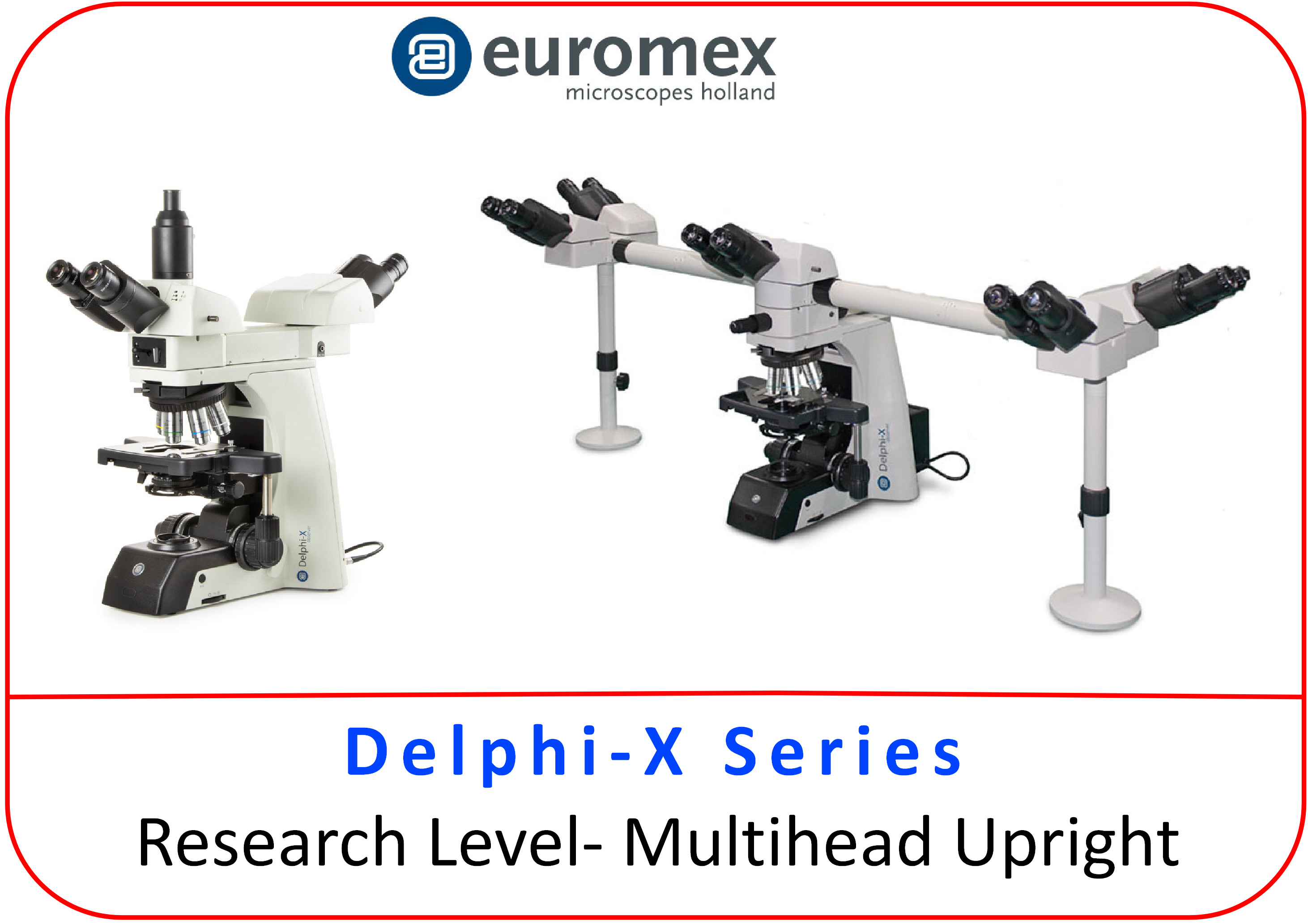 delphi_multihead_button