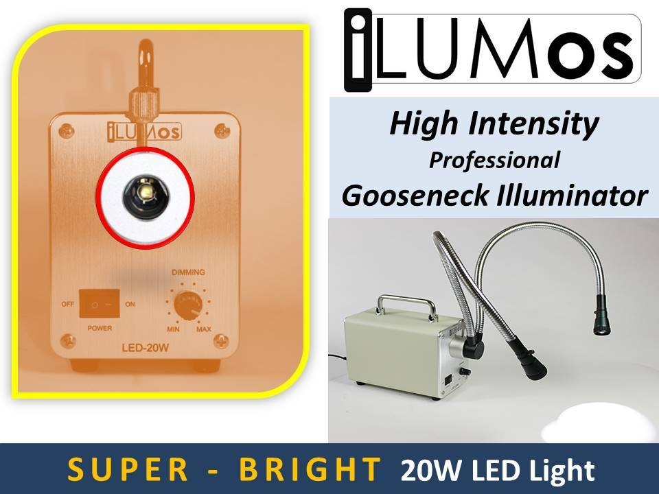0153 iLUMos 20W High Intensity LED Lamphouse with Dual Goosenecks by GT Vision