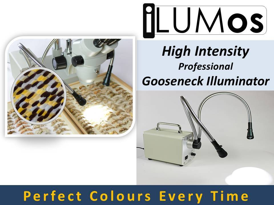 0153 iLUMos High Intensity LED Lamphouse with Dual Goosenecks by GT Vision