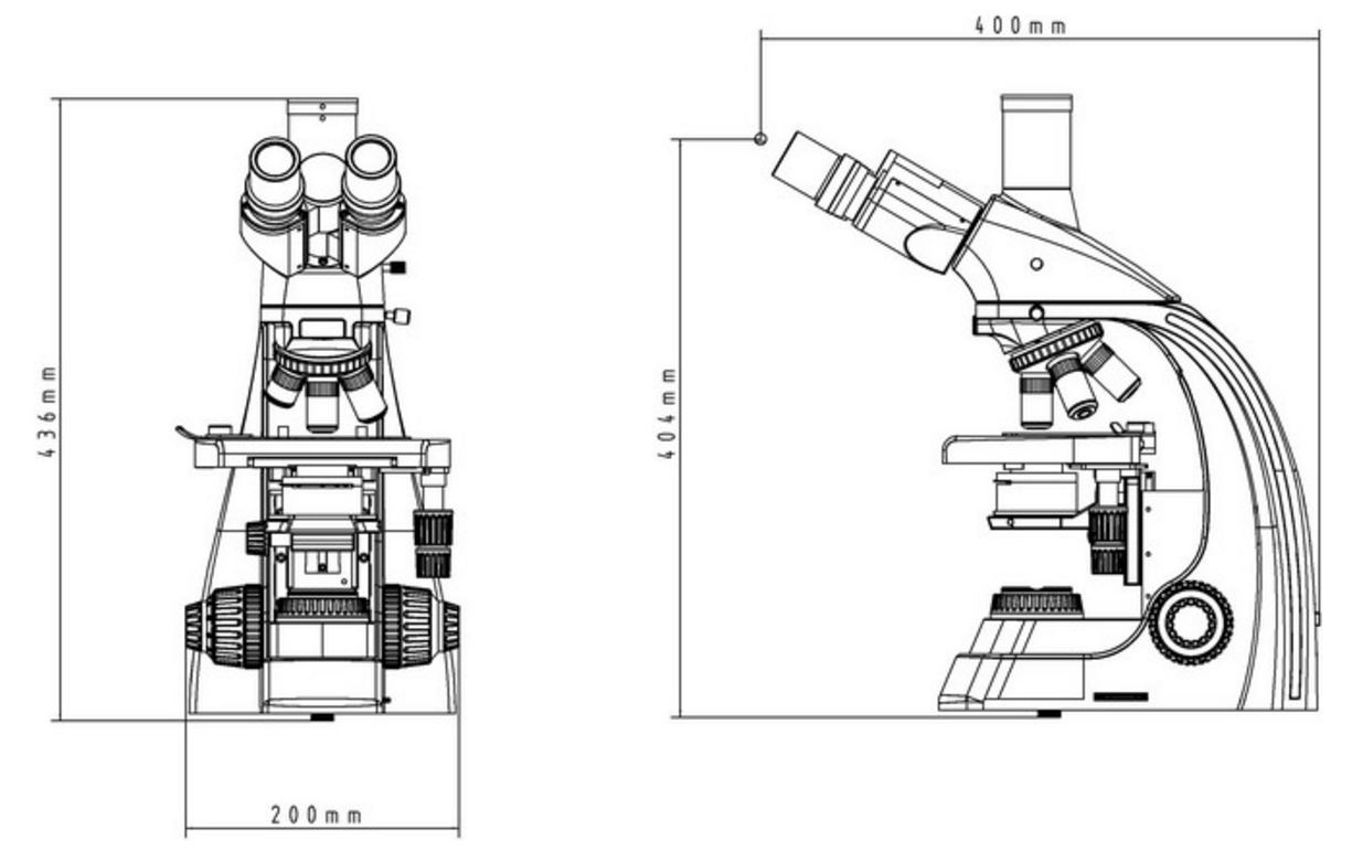 Dimensions_of_GX_Microscopes_GXM-L2800_Biological_Upright_Compound_Microscope_from_GT_Vision